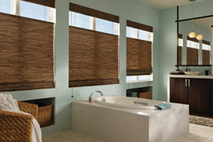 Tysons Corner window treatment company