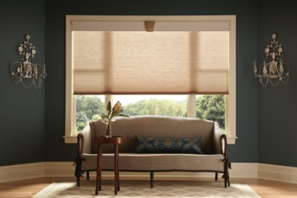Woodbridge Shutter Company, Washington DC Window Treatment, Washington DC Roman Shades