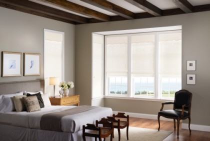 Washington DC Shutter Company, Chevy Chase Shutter Company, Washington DC Window Treatment, Washington DC Shades